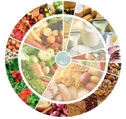 Roda dos alimentos mediterrânica